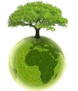 ECOLO-vert-7.jpg