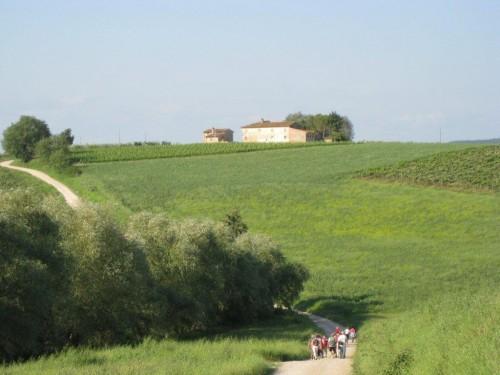 Toscane mai-juin 2012 176.jpg