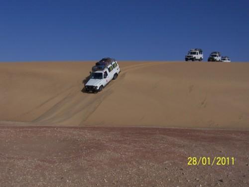 promenade dans les dunes [].JPG