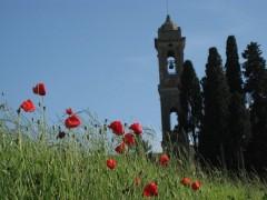 Toscane mai-juin 2012 171.jpg